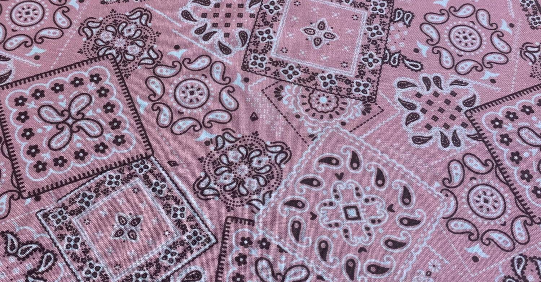 Face Mask - 635 Pink Bandana