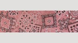 Cooling Tie - 648 Pink Bandana