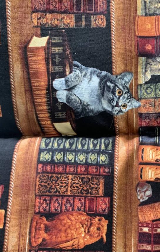 Mat Nip - Library Cats